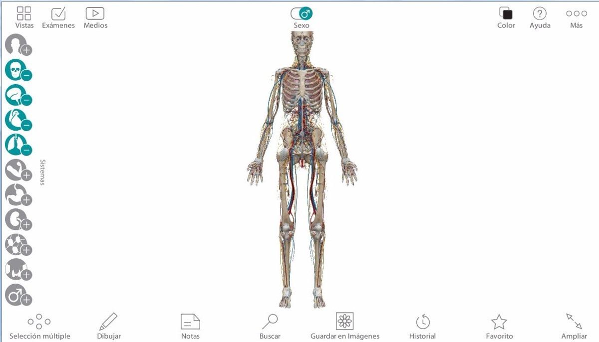 Programa Atlas Anatomía Humana Español 3d - Bs. 87,50 en Mercado Libre