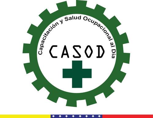 programa de seguridad y salud laboral - lopcymat - inpsasel