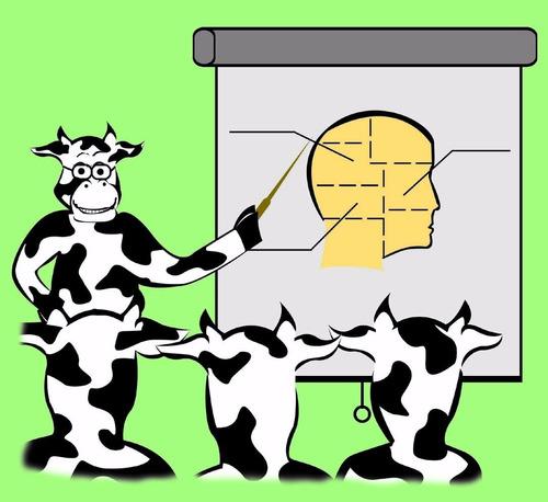 programa para manejo de ganaderias