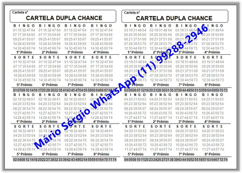 programa para numerar cartelas e sorteio  max bingo .
