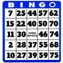 programa para numerar cartelas e sorteio max bingo