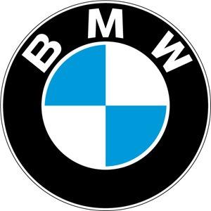 programação codificação online bmw mini cooper