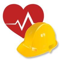 programas de seguridad y salud laboral