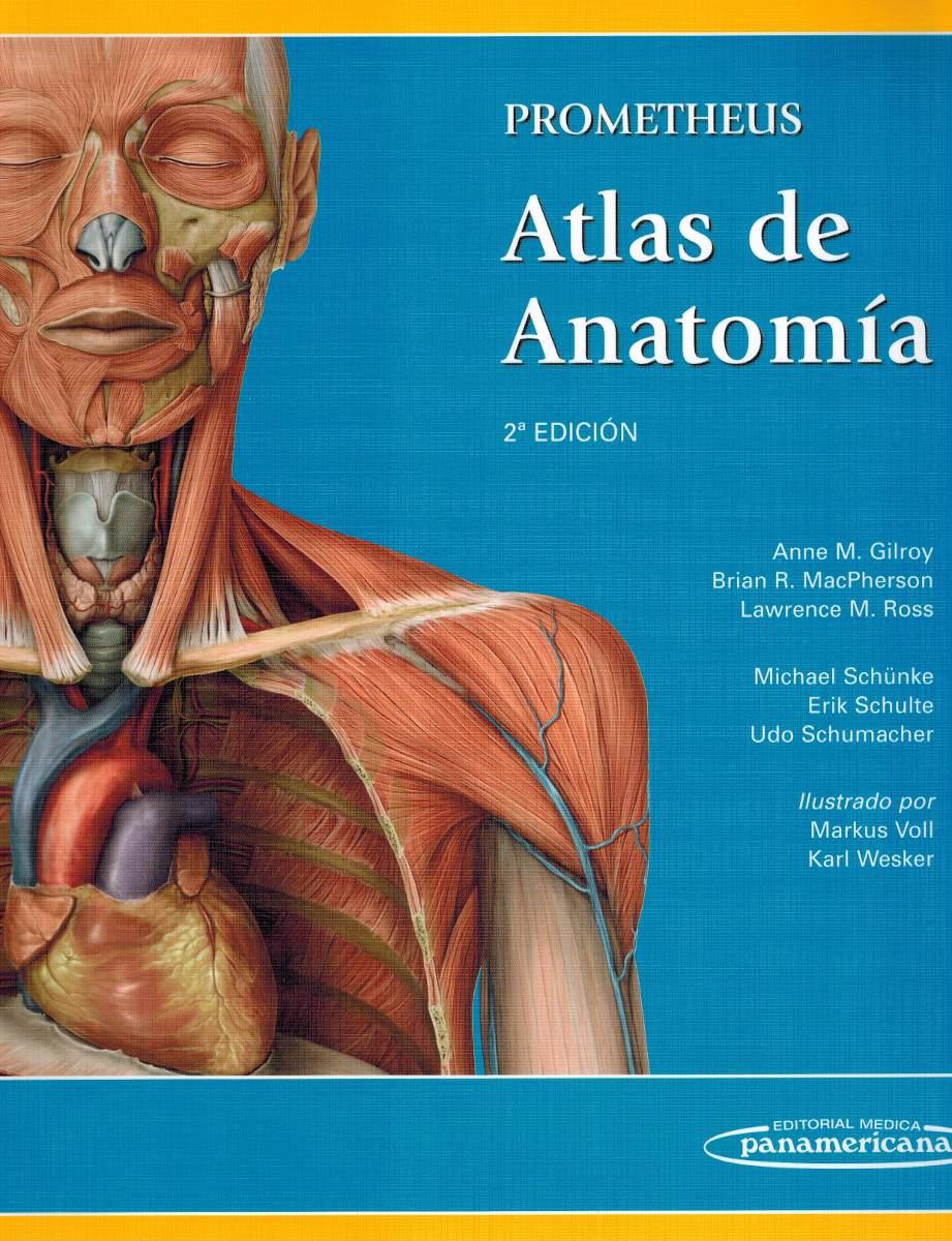 Prometheus. Atlas De Anatomía 2ª Ed. Gilroy. Nuevo. - $ 64.000 en ...