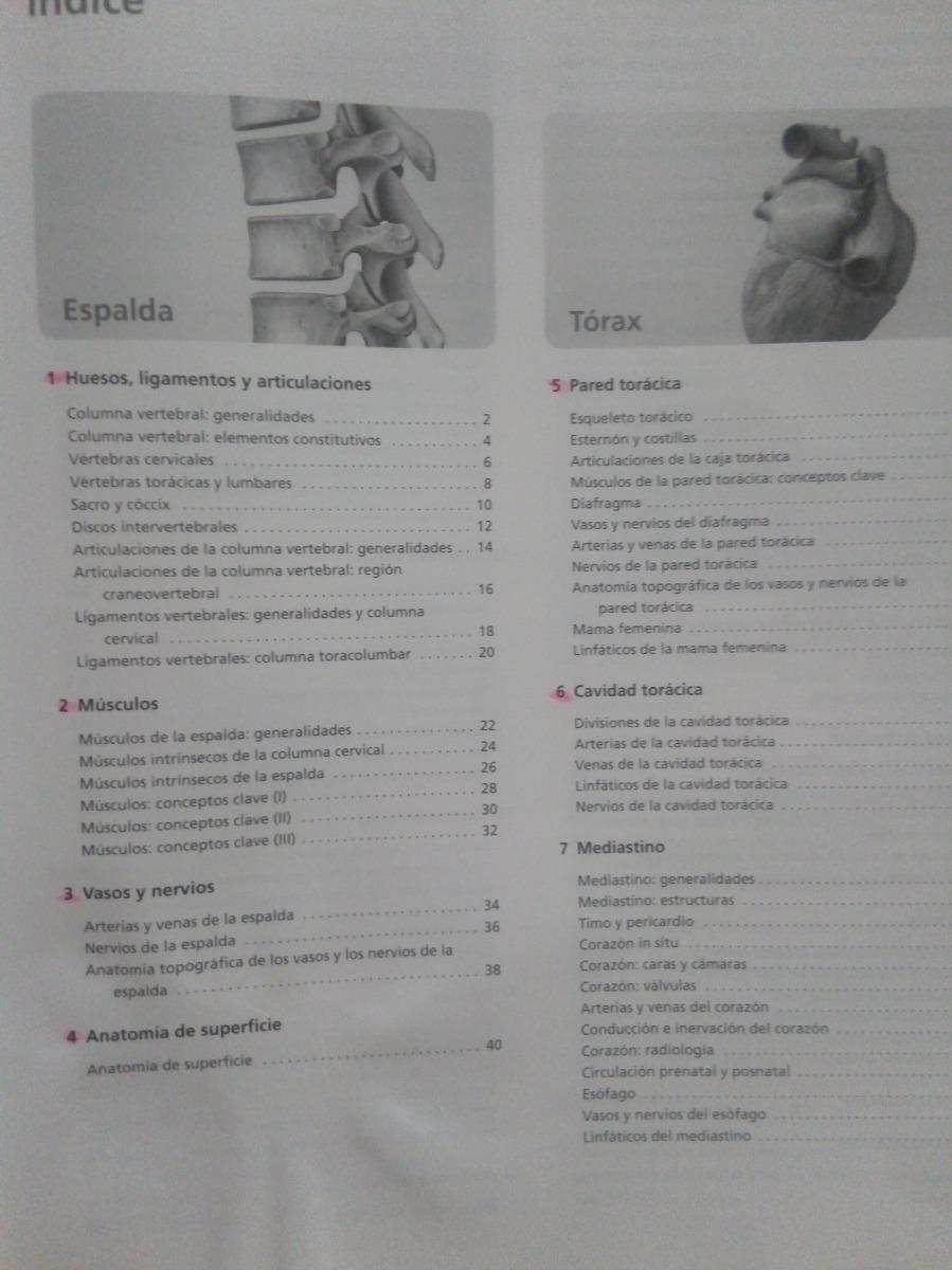 Prometheus Atlas De Anatomía Ed. 1 + Fichas Autoevaluación - $ 1.600 ...