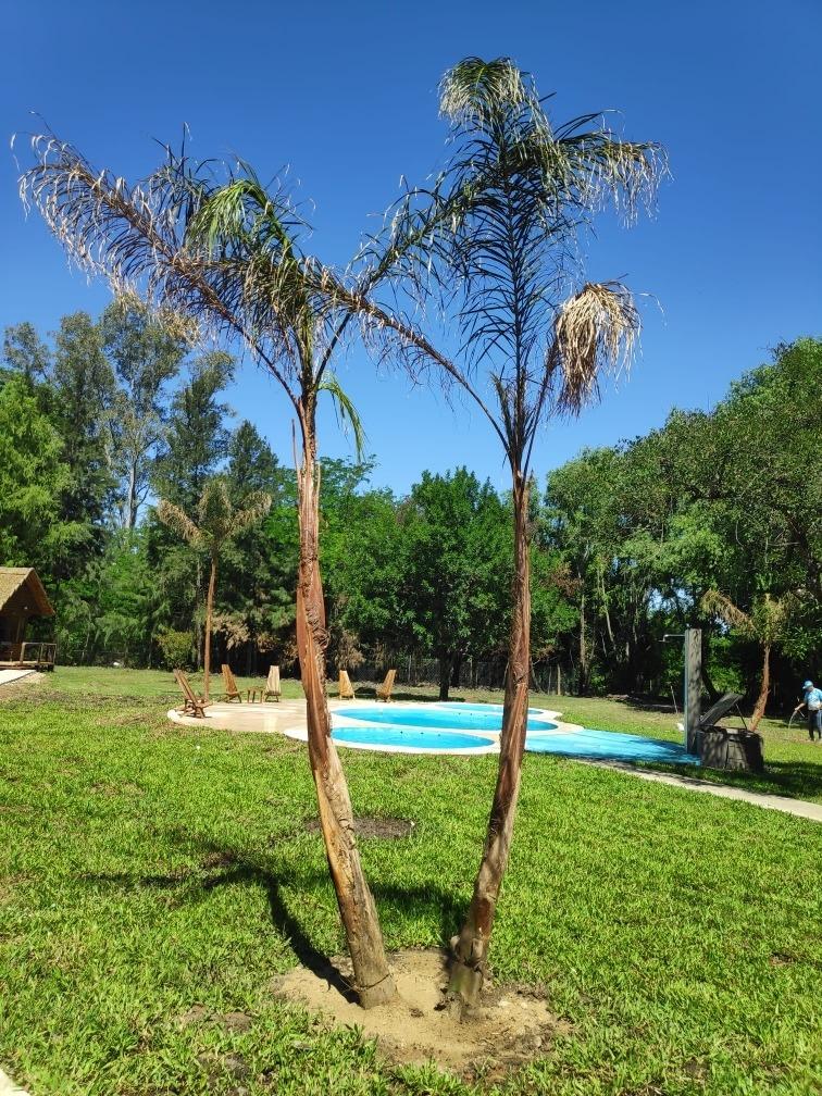 promo  30% dto complejo de cabañas en gualeguaychu