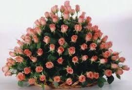 promocion,canastas cien rosas!! entrega s/c capital