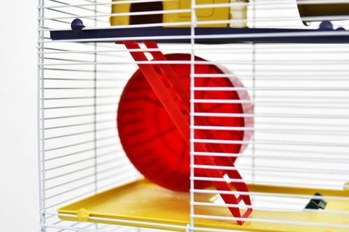 promoção gaiola hamster roedores 3 andares com teto completa