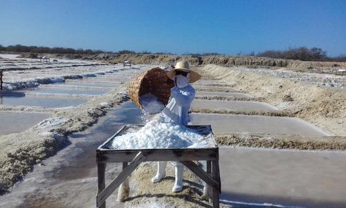 promoção sal marinho de mossoró - 100% integral (20 kg)