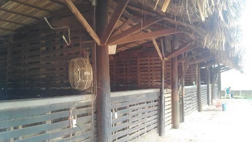 propiedad 2,500m2 con instalaciones para la cuida d caballos
