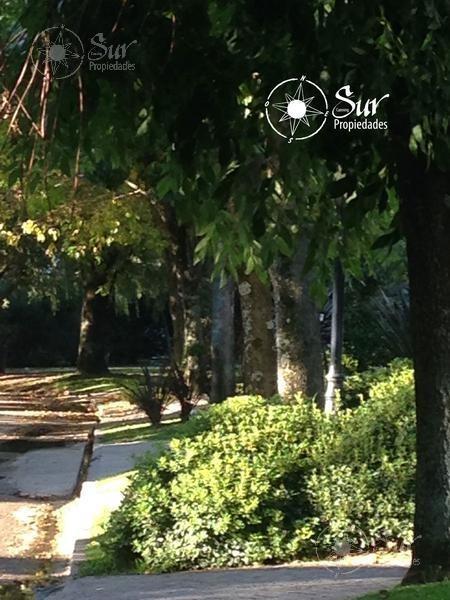 propiedad amplia y luminosa en solar del bosque : excelente estado