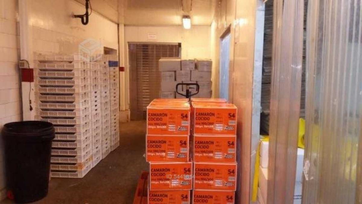 propiedad comercial / ind / frigorífico