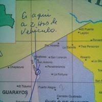 propiedad de 10.000 has. as.guarayos-transf/usufructo vitali