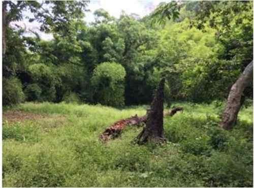 propiedad de 30 has, en lindero del rio el metate, frente a la comunidad  el manguito