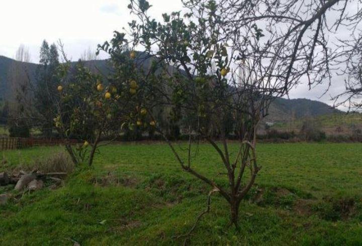 propiedad en 7 hectáreas en melipilla