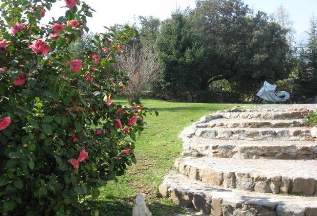 propiedad en arboretum