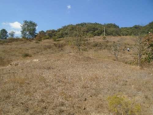 propiedad en temascaltepec. ideal para rancho o desarrollo.
