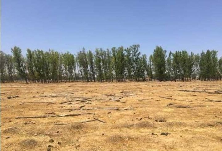 propiedad en terreno agricola en quilicura, pronto urbano