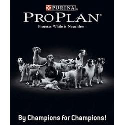 proplan adulto complete protection x 15 kg