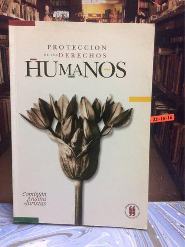 protección de los derechos humanos. derecho