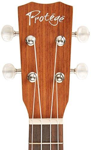 protege by cordoba u100cm concert ukulele excl