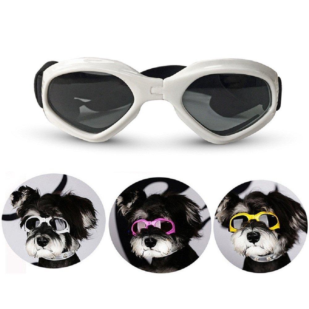 4470bc51f5 Proveedor De Viviendas Gafas Para Perros Gafas De Sol Para ...
