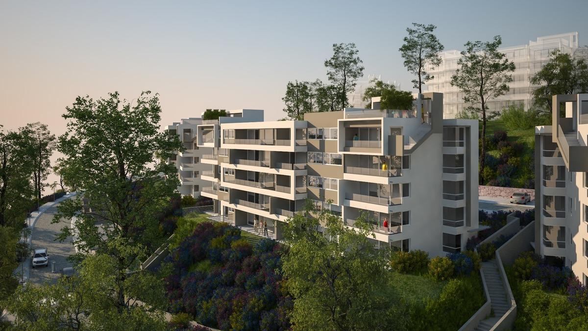 proyecto barrio foresta
