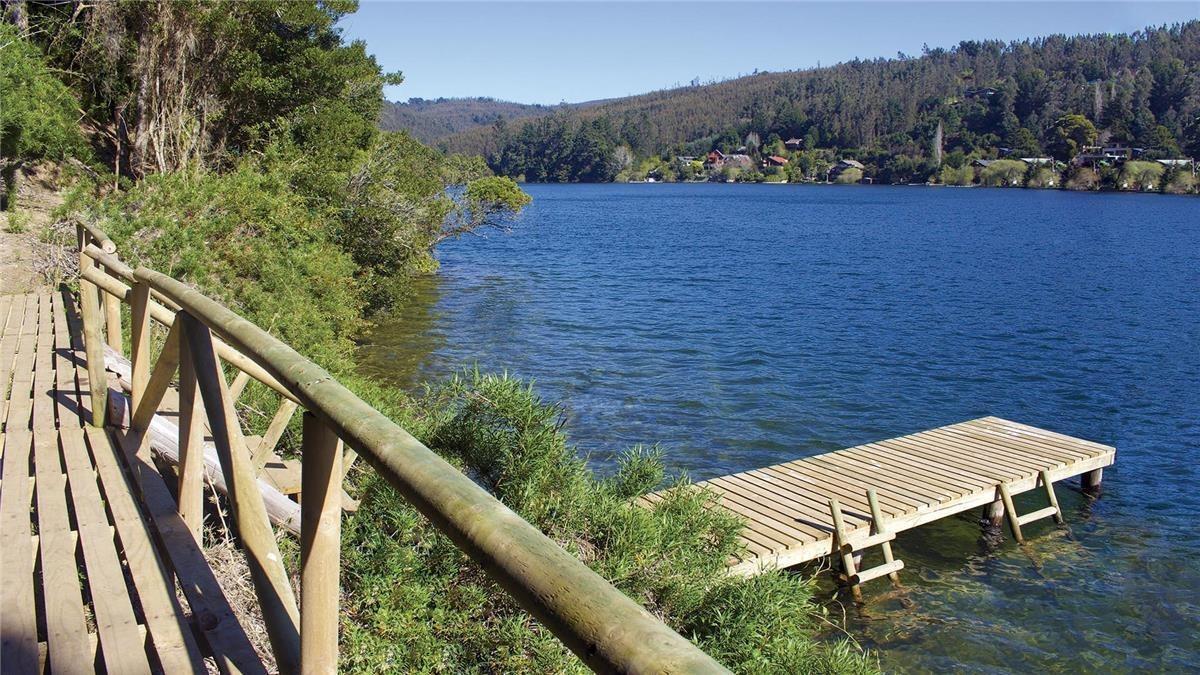 proyecto bosque laguna - etapa 2