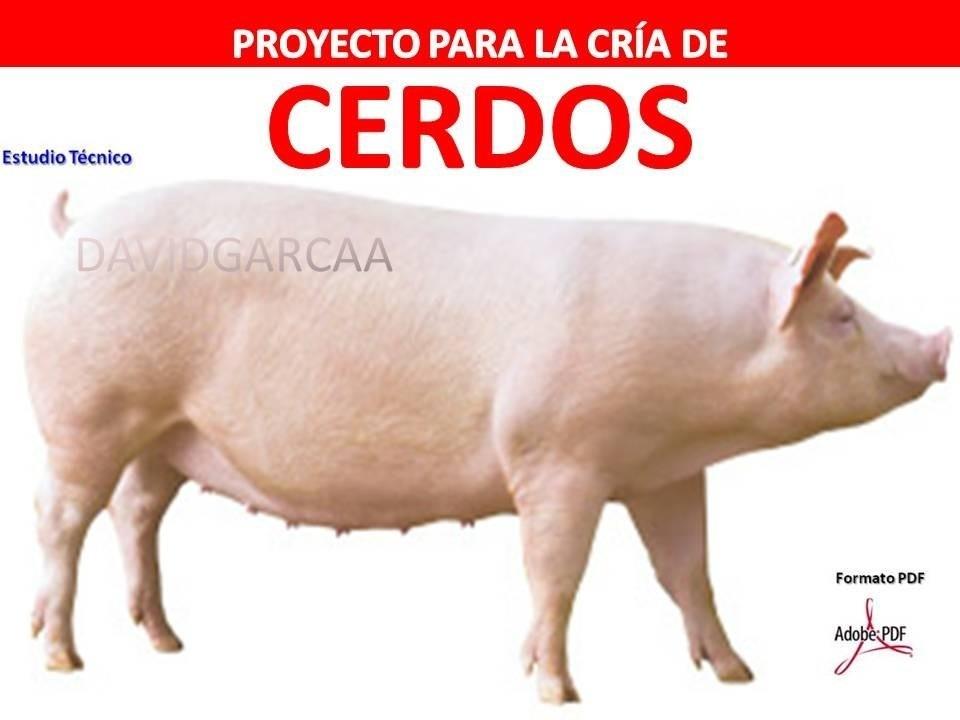 Proyecto de porcinos cerdos instalaciones corrales for Proyecto de crianza de truchas pdf