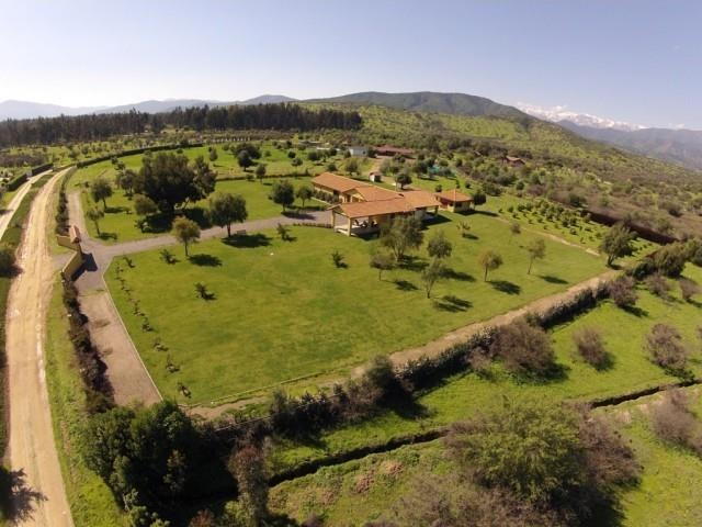 proyecto foresta de zapallar