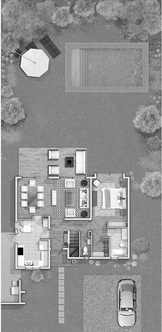 proyecto taiquén
