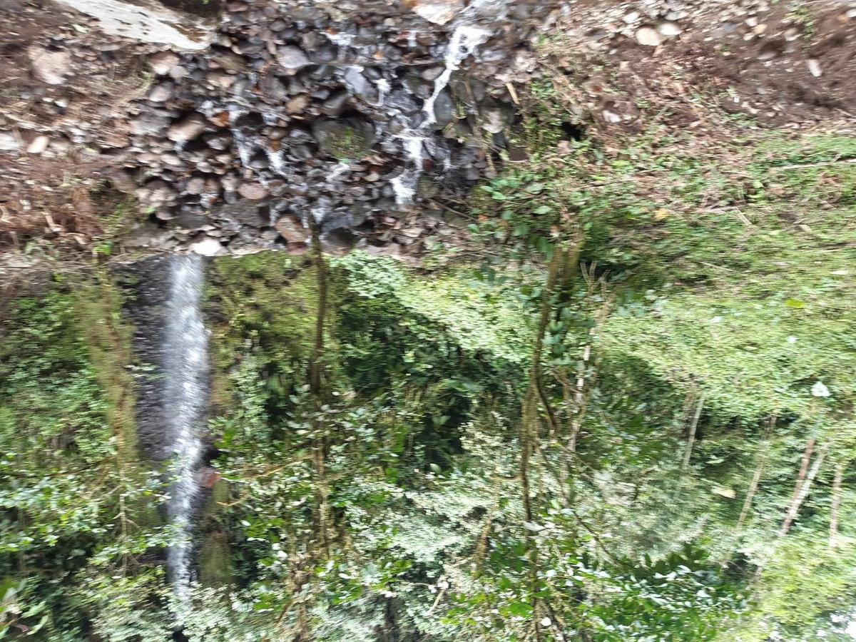 proyecto turístico - río negro baños