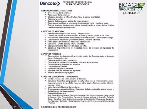 proyectos  plan de negocios (bancoex)