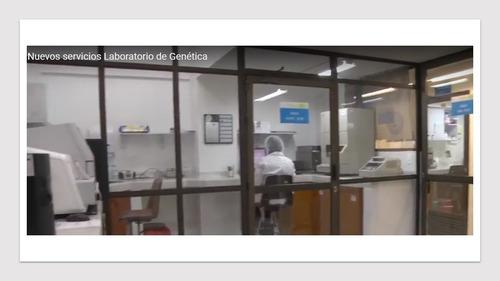 prueba de paternidad examen adn bucaramanga $24000 persona