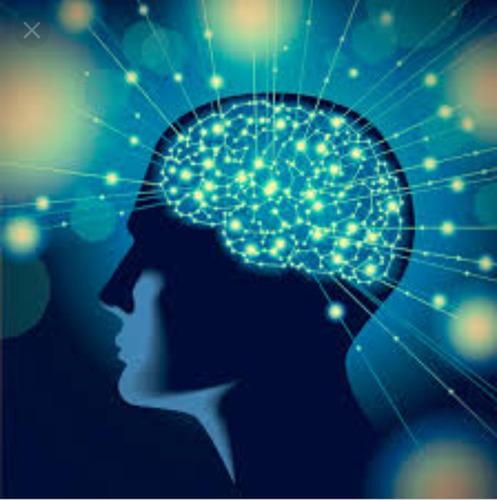 psicologo clinico especialista en psicología cognitiva