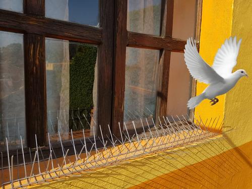 púas anti-palomas y aves 45mt de largo (2cm separacion)