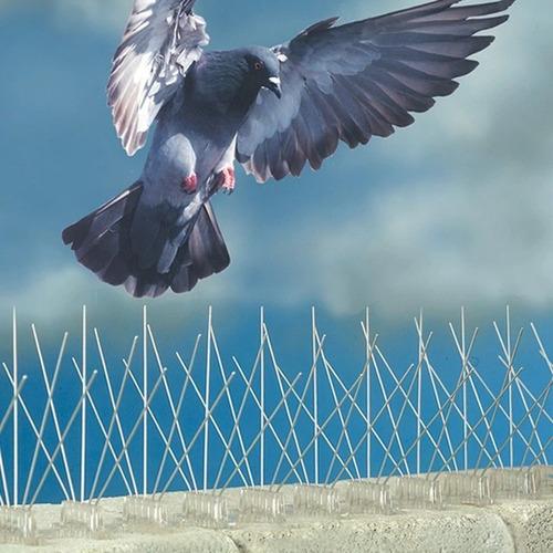 puas  anti-palomas y aves (cerradas 1.3 cm)