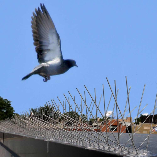 puas para paloma bird-x / pincho repelente importado