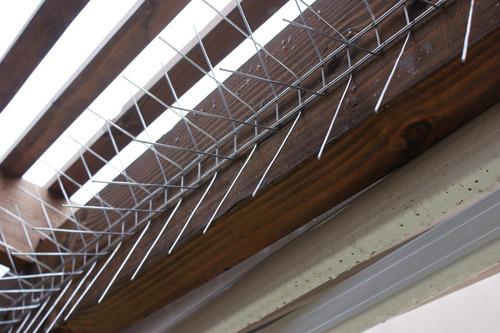 puas y pinchos para control de palomas - antipalomas 1 metro