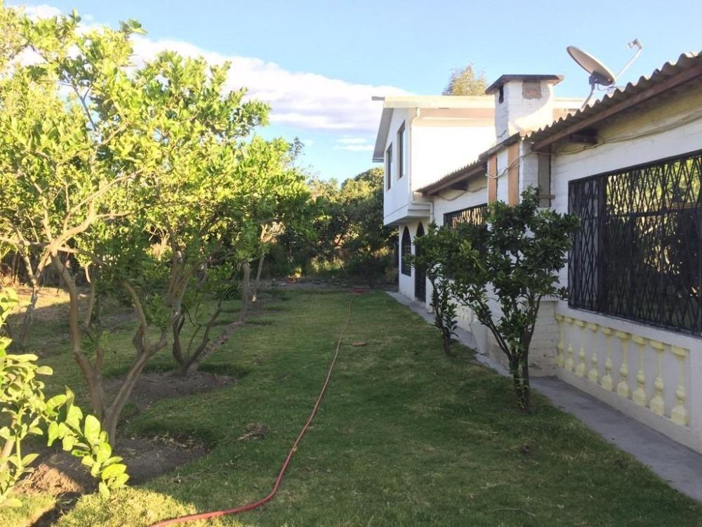 puembo, casa 3 dorm 4 baños, terreno amplio arboles frutales