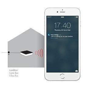 puente de voz - su línea fija en su celular