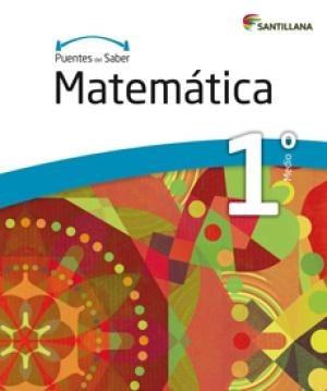 puentes del saber matematica 1° medio santillana