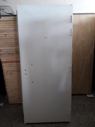 puerta doble chapa de seguridad inyectada
