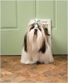 puerta plastico para perro chica