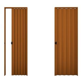 Puerta Plegadiza De Pvc Reforzado Con Traba 70x200