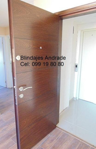 puertas blindadas andrade  (montevideo)