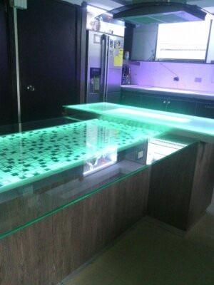 Puertas de ba os topes de cocina de vidrio bs - Puertas de cristal para cocinas ...