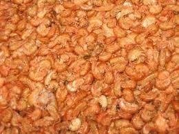 pulga de mar alimento y comida para tortugas de agua 900gram