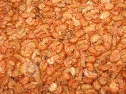 pulga de mar  roja alimento