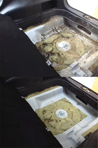 pulido, simunizado, lavado de tapiz de autos a domicilio
